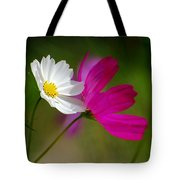 Catching Light Tote Bag