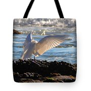 Catching Rays At The Beach Tote Bag