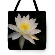 Catching Some Sun Tote Bag