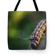 Macro -caterpillar Tote Bag