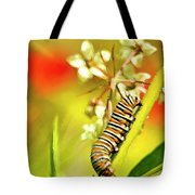 Caterpillar Stage 2 Tote Bag