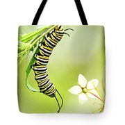 Caterpiller On Plant Tote Bag