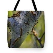 Caterpilliars Tote Bag