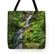 Cathedral Falls 2 - Paint Tote Bag