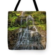 Cathedral Falls 3 Tote Bag