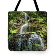Cathedral Falls 4 - Paint Tote Bag