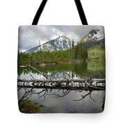 Cathedral Group Reflection On String Lake Tote Bag