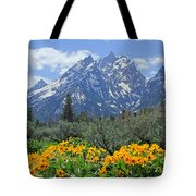 Dm9328-cathedral Group Tetons  Tote Bag