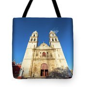 Cathedral In Campeche Tote Bag