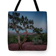 Cathedral Rock Overview Tote Bag by Gary Lengyel