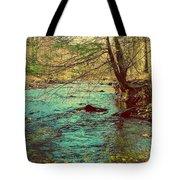 Catoctin Spring Tote Bag