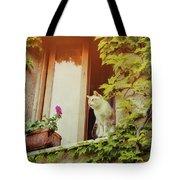 Cats Eye View Tote Bag