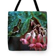 Cat's Paw Begonia Tote Bag