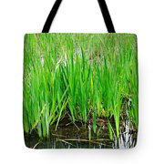 Cattail Green Tote Bag
