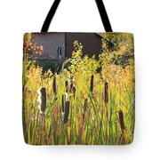 Cattails And Barn Tote Bag