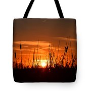 Cattails And Twilight Tote Bag