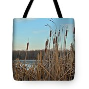 Cattails At Skymount Pond Pa Tote Bag