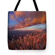 Cattails In The Wind Tote Bag