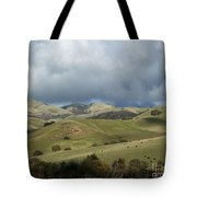 Cattle And Countryside Photograph Tote Bag