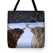 Cattle Cousins Tote Bag