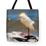 Cattle Egret In Breeding Plumage Tote Bag