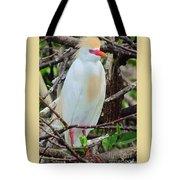 Rainbow Bill Cattle Egret Tote Bag