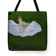 Cattle Egret Prepared For Landing - Digitalart Tote Bag