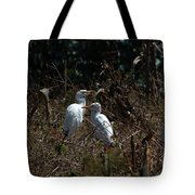 Cattle Egrets In A Pasture Tote Bag