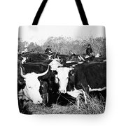 Cattle: Longhorns Tote Bag