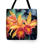 Cattleya Orchids Tote Bag by Allan Seiden - Printscapes