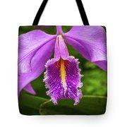 Cattleya Purpurata Tote Bag