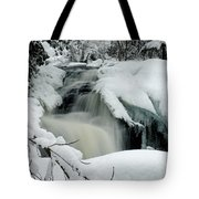 Cattyman Falls In Winter - Vertical Tote Bag