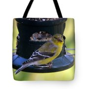 Caught At The Feeder Tote Bag