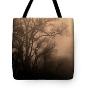 Caught Between Light And Dark Tote Bag
