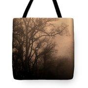 Caught Between Light And Dark Tote Bag