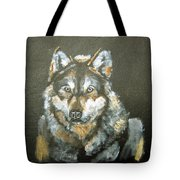 Caught In The Head Lights Tote Bag