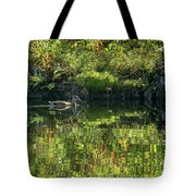 Caught In The Reflection Tote Bag