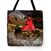 Caught In The Waterfall Tote Bag