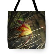 Caught In The Wind Tote Bag