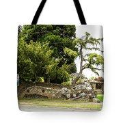 Causland Memorial Park In Anacortes Tote Bag