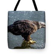 Cautious Eagle Tote Bag