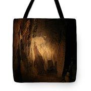 Cave 9 Tote Bag