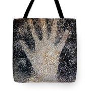 Cave Art: Pech Merle Tote Bag