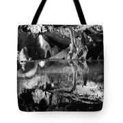Cave Reflection 2 Tote Bag