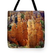 Cedar Breaks 1 Tote Bag