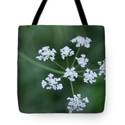 Cedar Park Texas Hedge Parsley Tote Bag