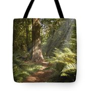 Cedar Path Tote Bag