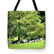 Cedar Shade Tote Bag