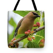 Cedar Waxwing With Mulberries Tote Bag
