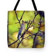 Cedar Waxwing With Windblown Crest Tote Bag
